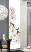 Japonská stena 84364 KIRANGI